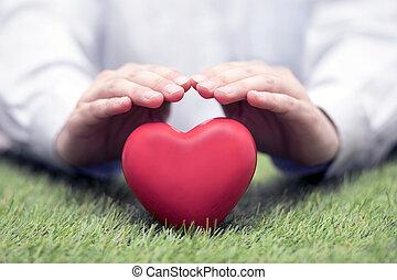לב, מושג, אהוב, ביטוח, בריאות, אדום, ירוק מכוסה, דשא, או, hands.