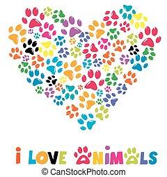 לב, סימני עקב, בעלי חיים, צבעוני