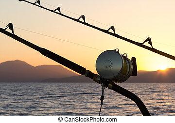 לדוג, מרלין