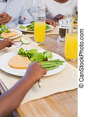להנות, ארוחה בריאה, ביחד, משפחה