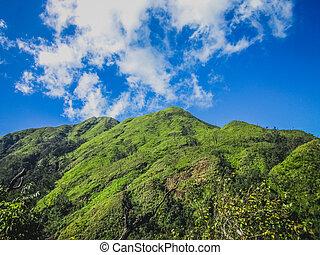 להתגלגל, גבעות ירוקות, ו, a, שמיים כחולים