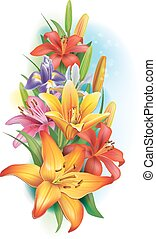 ליליות, קשתיות העין, פרחים, גירלנדה
