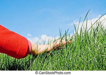 ללטף, דשא