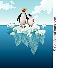לעמוד, פנגווינים, רזה, קרח