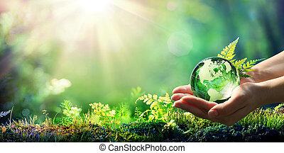 מושג, גלובוס, -, סביבה, כוס, יער ירוק, להחזיק ידיים