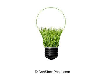 מושג, eco, בתוך, הפרד, רקע ירוק, נורת חשמל, לבן, דשא