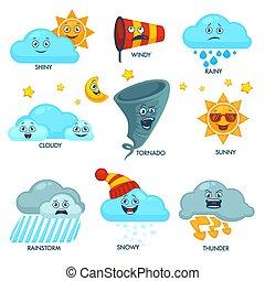 מזג אויר מנבא, יסודות, עם, פנים, ו, סימנים, קבע