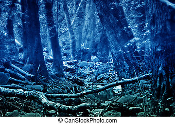 מיסטיקן, כולוריזאד, יער