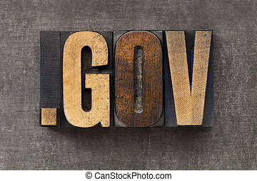 ממשלה, תחום, אינטרנט