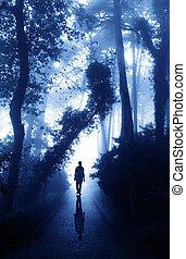 מעורפל, יער, דרך, איש