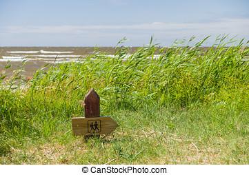 מעץ, לטיל שביל, תמרור, ב, ה, חוף ים