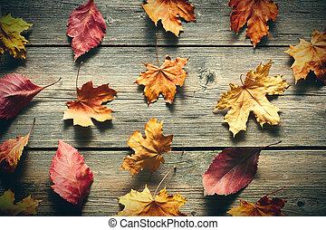 מעץ, עוזב, סתו, רקע, מעל, אדר