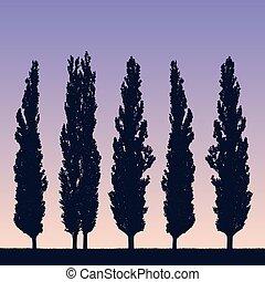 מציאותי, דוגמה, של, a, נוף, ו, שיט, של, צפצפות, כמו, a, ווינדבראיק, ב, ה, חוף, של, דשא, מתחת, a, סגול, שמיים כחולים, עם, ה, לעלות, או, שמש של מסגרת