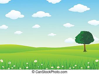 נוף, עם, דשא