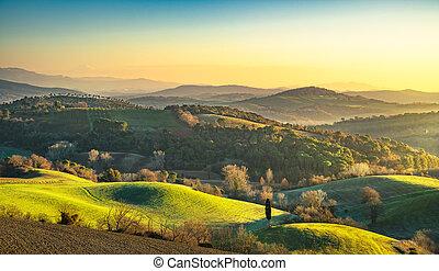 נוף., maremma, italy., טוסקנה, יער ירוק, כפרי, עלית שמש, field.