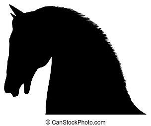 סוסים, הובל