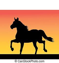 סוס, לרוץ