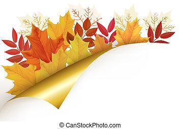 סתו, וקטור, illustration., רקע, leaves.