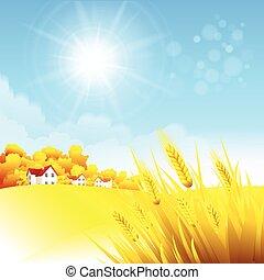 סתו, כפרי, נוף., וקטור, דוגמה