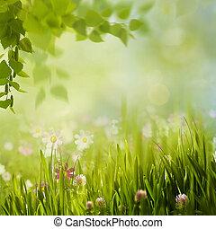 עונתי, קיץ, אחו, יופי, תקציר, רקעים, פרחים, ללבלב