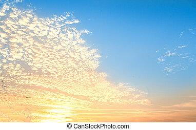 עלית שמש, -, שמיים מעוננים, תקציר, רקע., חלק, שיפוע, רקע, כחול קל, צבע
