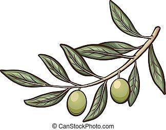 ענף של זית