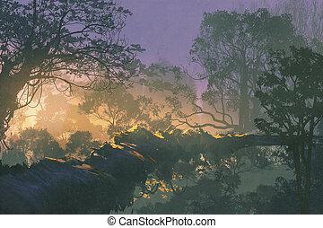 עץ, גשור, ב, יער גשם