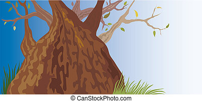 עץ ישן, (vector)