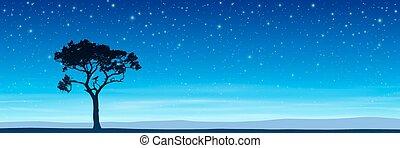 עץ, עם, שמיים של לילה