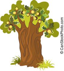 עץ של אלון