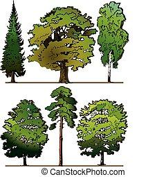 עצים.