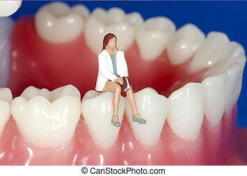 פגישה של השיניים