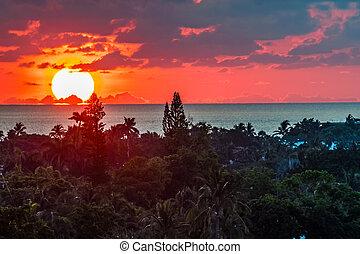 פלורידה, עלית שמש
