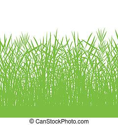 פראי, צלליות, פרט, דוגמה, רקע, צמחים, דשא