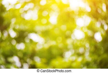 פרחוני, ירוק, bokeh, טבעי, רקע