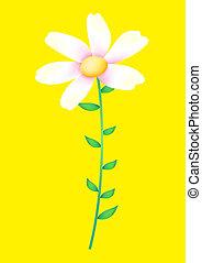 פרח פראי