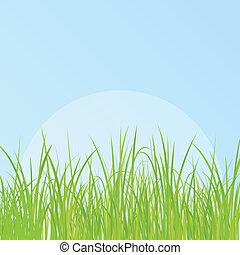 פרט, דשא, דוגמה, רקע