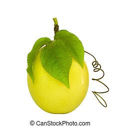 פרי של תשוקה, הפרד, בלבן