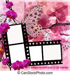 פרפרים, ו, סחלבים, פרחים, רקע ורוד, עם, הסרט, הסגר, (, 1, של, set)