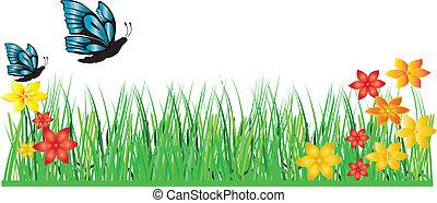 פרפר, דשא, פרוח