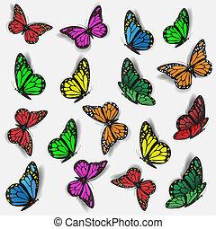 צבעוני, פרפרים