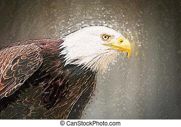 צייר, קירח, eagle., דמות של דוגמה