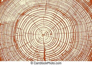 צלצולים של עץ, ראה, חתוך, חדק של עץ, רקע., וקטור,...