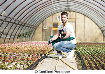 צמחים, עובד, פעוטון, חממה, לתקן, זכר, שמח