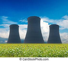 צמח גרעיני, הנע