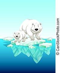 קוטבי, קרח, גור, ילד, אמא