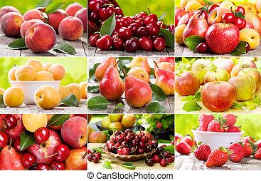 קולז', עם, פירות, ו, עינבים
