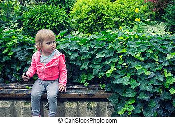 קטן, לאכול, לשבת, גן, ממתק, ספסל, ילדה