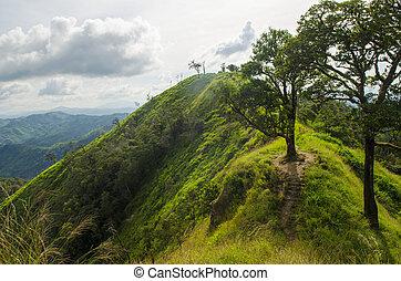 קיץ, הרים, שמש, מעל, ridge., נוף