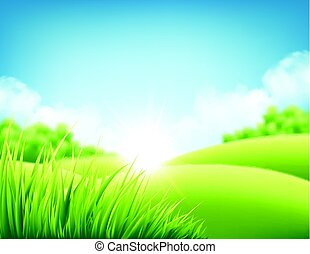 קיץ, טבע, עלית שמש, רקע, a, נוף, עם, גבעות ירוקות, ו, אחוים, שמיים כחולים, ו, clouds., וקטור, דוגמה